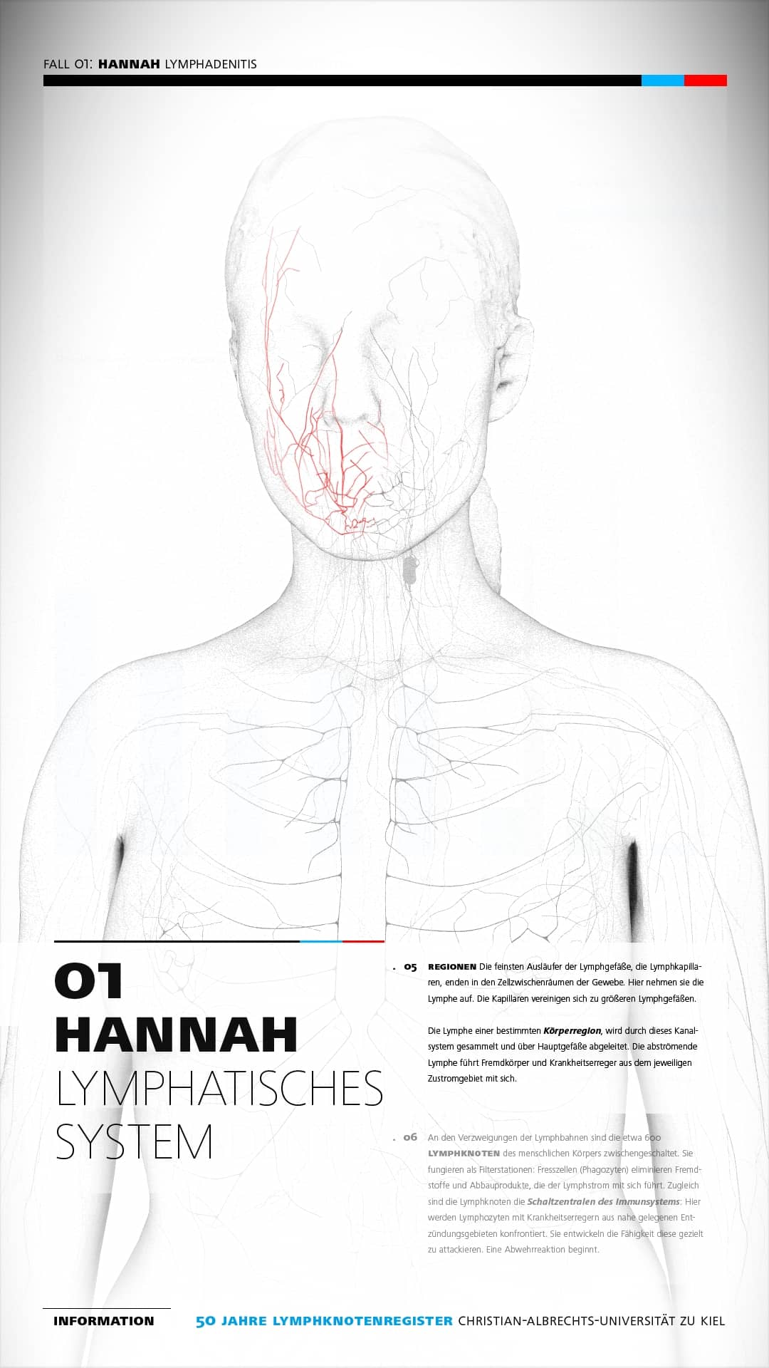 Interactive Poster / Lymphatic System – The Science Communication Lab